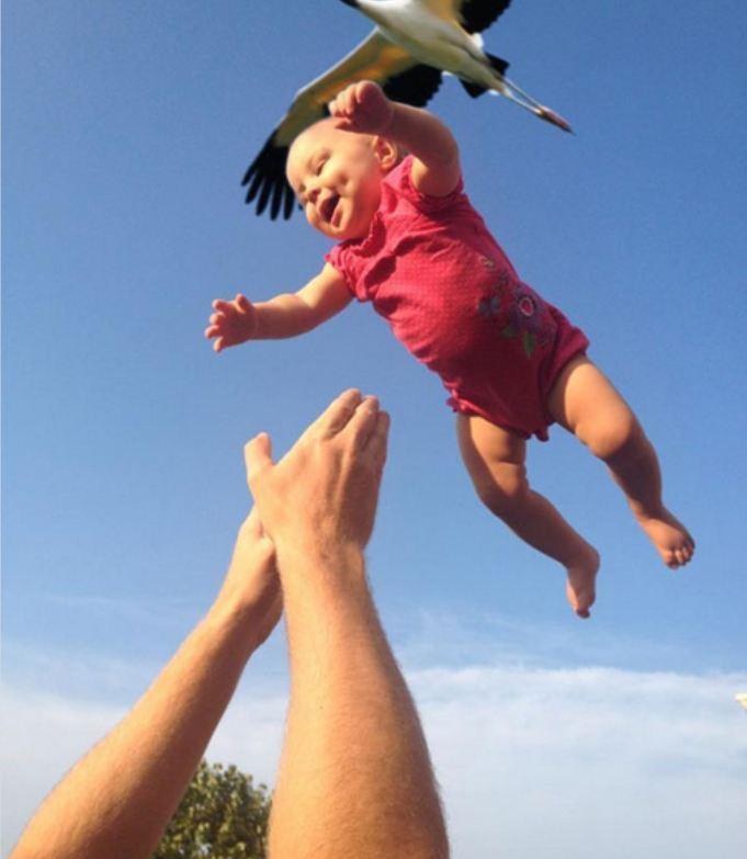 малыш и аист