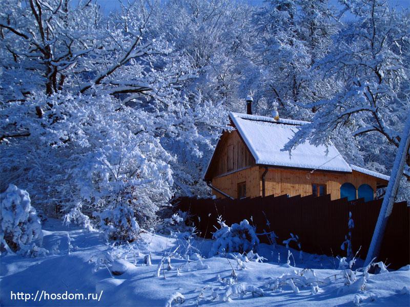снежная зима утро 16