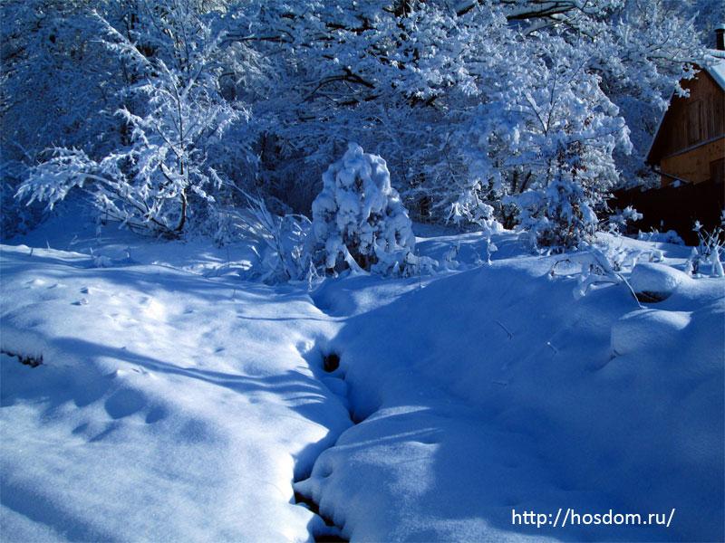 снежная зима утро 15