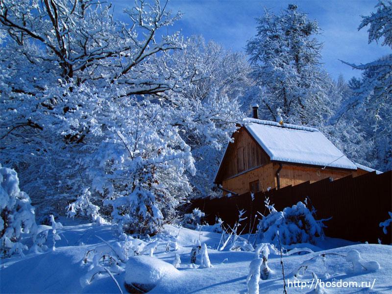 снежная зима утро 29