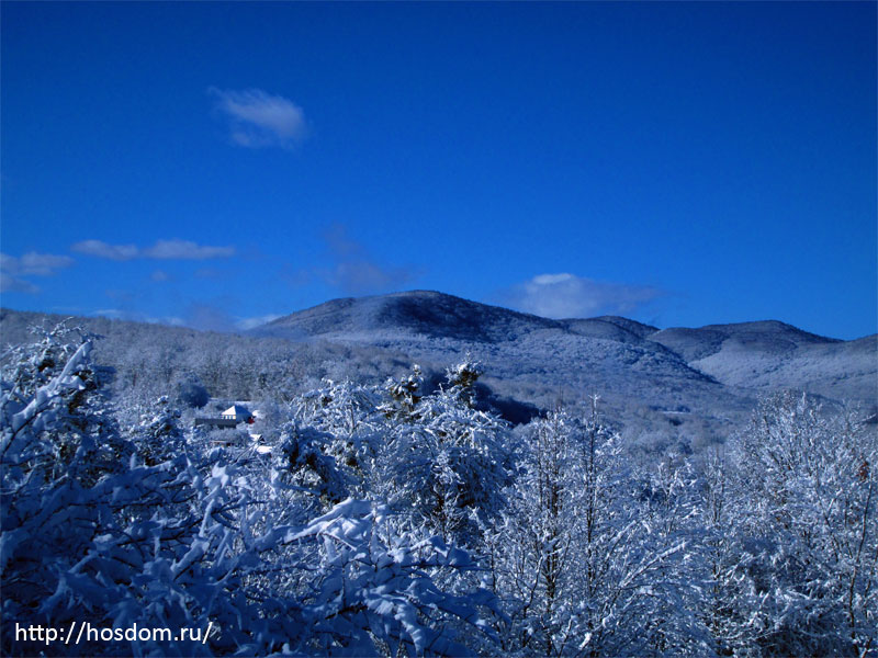 снежная зима утро 26