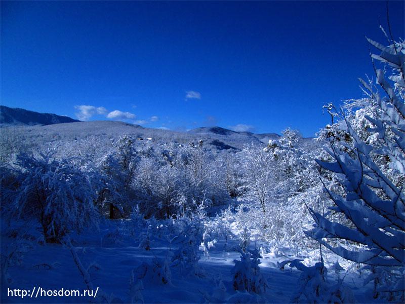 снежная зима утро 5