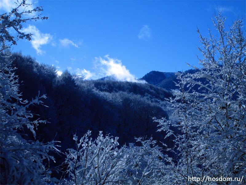 снежная зима утро 1
