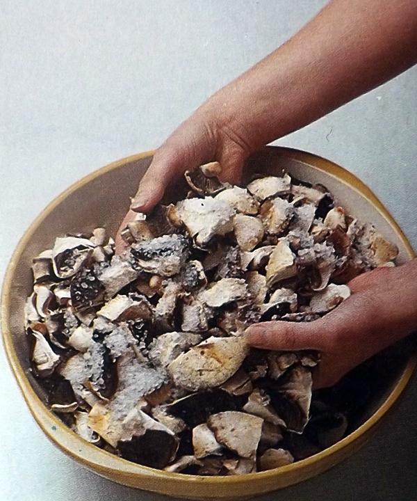 Острый-грибной-кетчуп-2