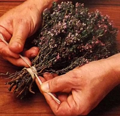 Пряные-травы-сушка
